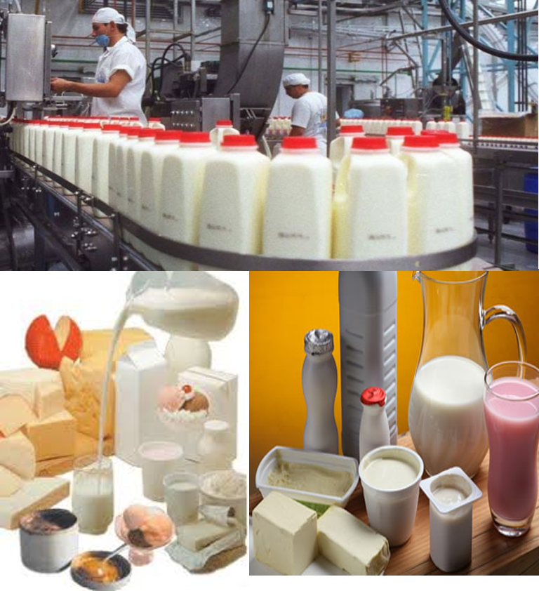 Comportamiento del Procesamiento Lácteo en la Industria Venezolana. Julio 2019